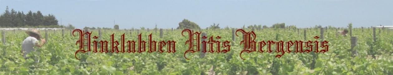 vitisbergensis.com